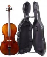 Set: Meister-Cello Walter Mahr 2018 Koffer Arcus Müsing Bogen