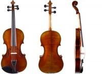 Geige Walter Mahr - Bubenreuth 2021 4/4 02-32 mieten