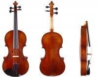 Mietgeige - Violine der gehobenen Qualität /Bubenreuth