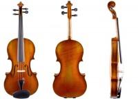 Etwa 100 Jahre alte Geige Zettel Johannes Eberle mieten
