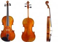 Geige von Gerd Mallon, Greiz anno 2020 mieten