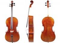 Cello 4/4 - gehobene Qualität - Bubenreuth 2016