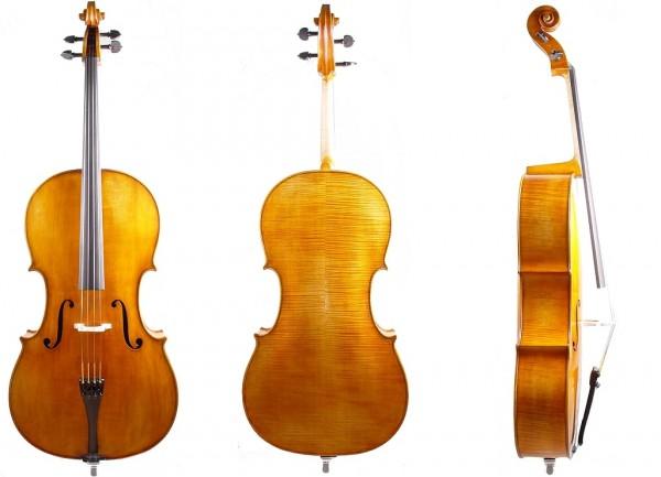 Meister Cello Walter Mahr anno 2021-1