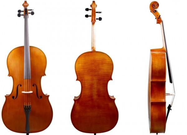 Cello 4/4 - gehobene Qualität - Walter Mahr 2017-08-23-1