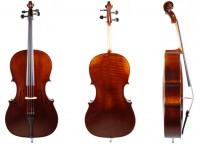 Cello von Lothar Semmlinger anno 2018 - Solo
