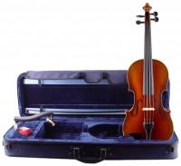Violinset: Violine Walter Mahr Bogen Koffer Schulterstütze
