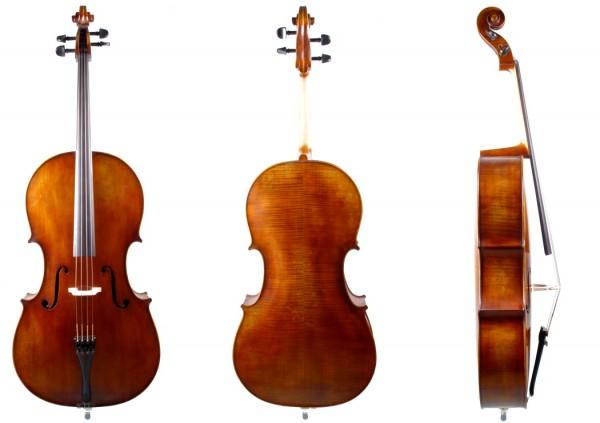 Cello Walter Mahr, Meisterarbeit Bubenreuth 2018-05-26-1