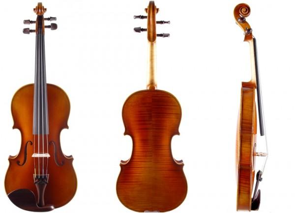 Meistergeige-Geige24-1