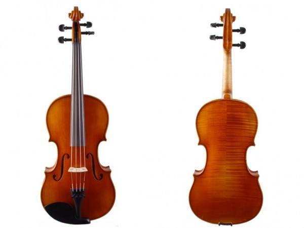 Viola mit Korpuslänge 38 cm von Walter Mahr1