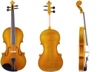 Die günstigste Violine von Walter Mahr 11-12 mieten
