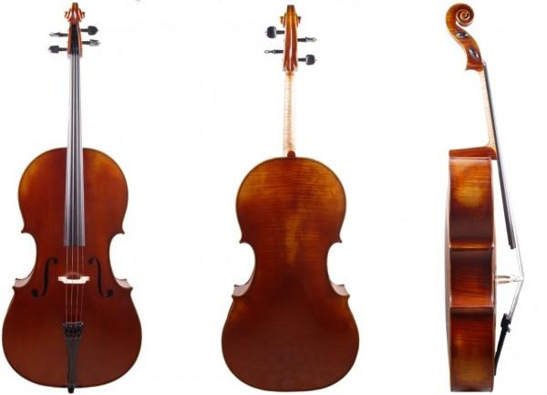 Cello-Gofriller-Modell-bei-Geige24-1
