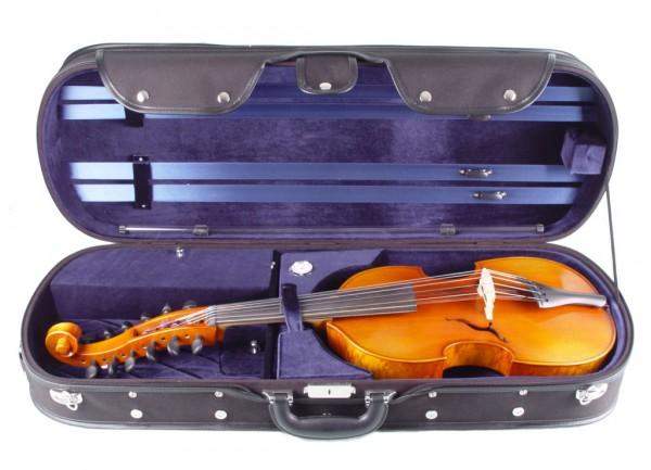 Viola d'Amore von Walter Mahr aus dem Jahr 2014 - 6-saitig mit Koffer