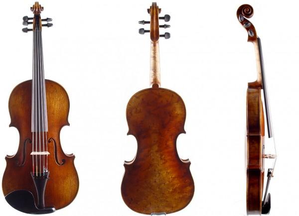 5-saitige Geige-1