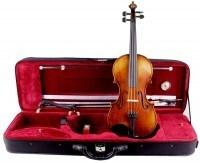 Geigenset mit Atelier - Violine von Walter Mahr 4/4 Größe