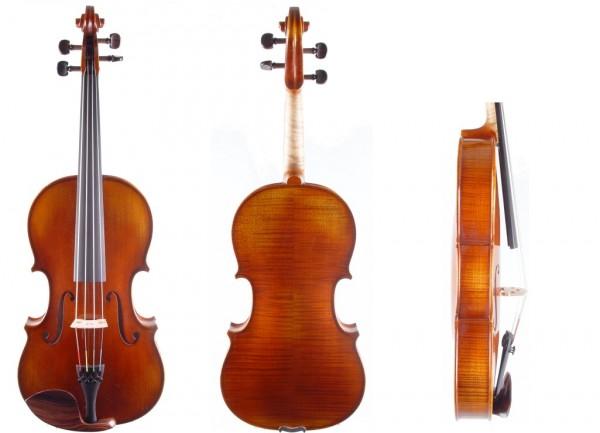 Viola aus Bubenreuth bei Geige24-1